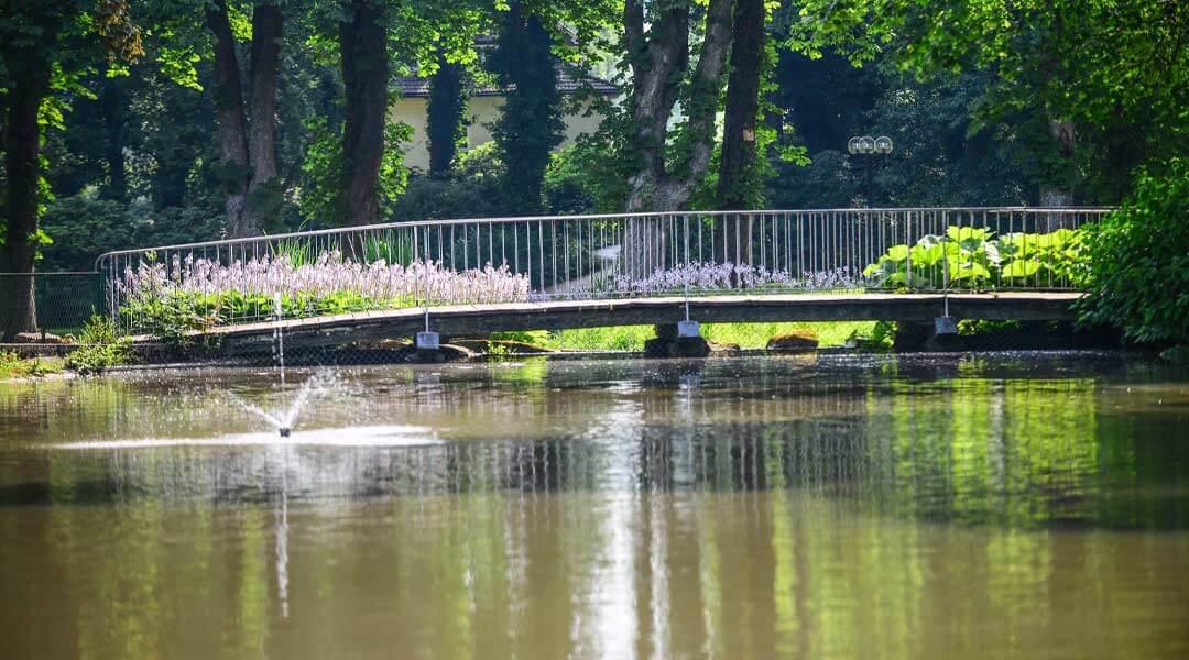 Brücke über den Teich an der Park Klinik